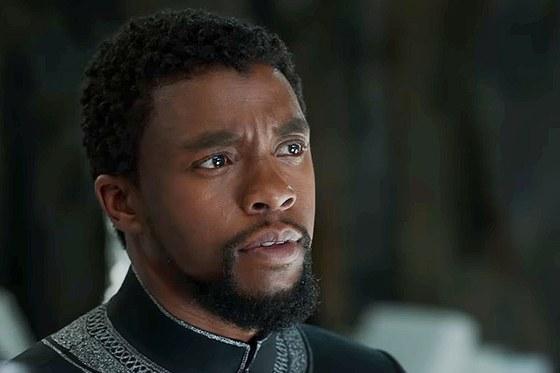 Chadwick Boseman Filmed 'Numerous Episodes' as T'Challa for Disney+