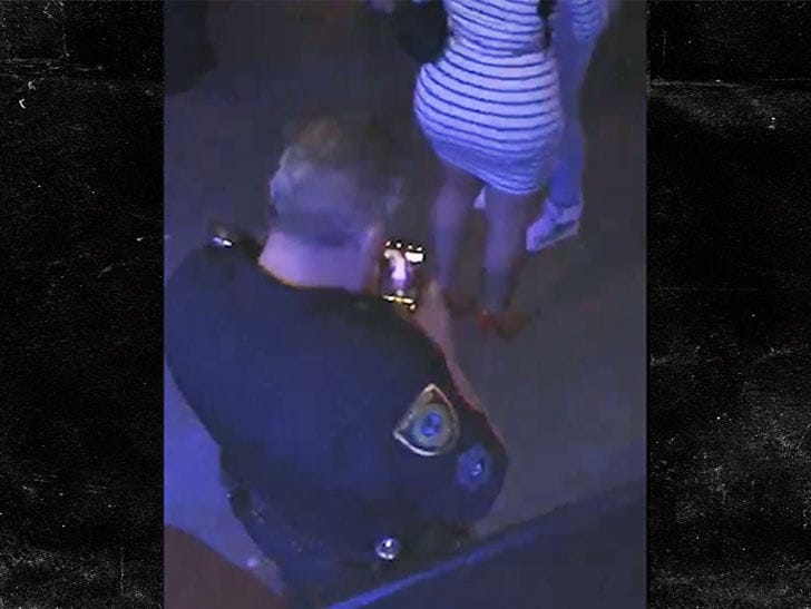Houston Cop Being Investigated for Taking Picture of Woman's Butt at Drake, Migos Concert